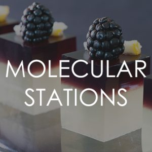 Molecular Stations